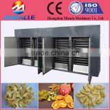 Automatic fruits chips drying machine/fruits slice dryer/food drying oven closet machine price