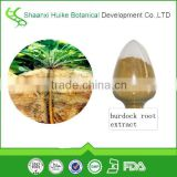 Factory supply bulk Burdock root Extract powder for lossing weight