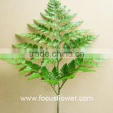 Flower Arranging Fresh Cut Tropical Foliage With Competitive Price High Quality Fresh Cut Foliage
