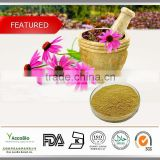 Best quality Echinacea Purpurea Extract, Best price Echinacea Purpurea Extract powder