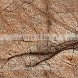 High Quality Cafe Forest Marble For Bathroom/Flooring/Wall etc & Best Marble Price
