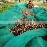100% virgin HDPE falling fruits harvest net/breaking resistance olive falling collection net/chestnuts picking