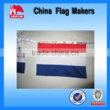 Custom Polyester Bunting Flag For Advertising Banner                                                                         Quality Choice