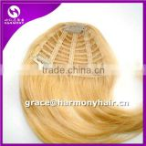 HOT SELLING INVENTORY 100% human hair clip in bangs/remy clip in hair extension bangs/human hair fringes                                                                         Quality Choice