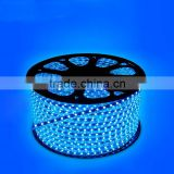 120V 220V 8mm FPC Blue Color 14.4W christmas led strip light outdoor use                                                                         Quality Choice