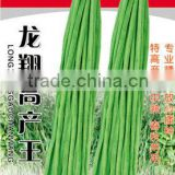 Chinese High Yield Long Green Asparagus Bean Seeds Cowpea Seeds For Growing-Long Xiang High Yield King