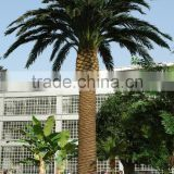fake plastic coconut tree factory home garden ornament use artificial palm tree