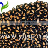 Chinese Black Watermelon Seed