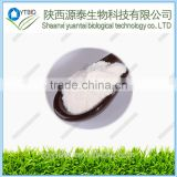 Supply High purity Betaine Anhydrous powder/cas:107-43-7