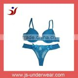 ladies sexy embroidery bra and panty new design