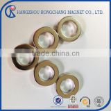 Ring NdFeB magnet of Epoxy coating with screw hole