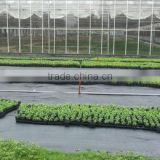 weed mat/ground cover/weed control mat/PP woven ground cover