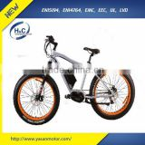 26'' Aluminium alloy Mid drive 350W Fat tire Mountain Bicycle electric with 8 Gears