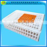 Large Chicken transport crate Superior ventilation Animal cage Poultry Coop Basket Made in china