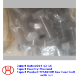 TITANIUM hex head bolt with nut