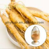 7% Ginseng root extract, panax ginseng extract for good health