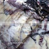 High Quality Breccia Capraia Marble For Bathroom/Flooring/Wall etc & Best Marble Price