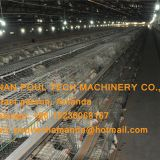 Poultry Farm Galvanized Steel Sheet Silver Automatic Broiler Chicken Cage  with Feeding&Drinking System