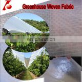 Chile market cherry tree rain covering transparent waterproof pe tarpaulin