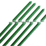 PE Coated plastic plant stakes