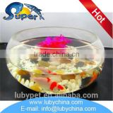 Hot selling table aquarium with low price