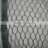 agriculture bird mist nets for catching birds