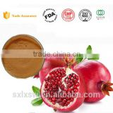 Hot selling skin care beauty antioxidant product Pomegranate peel extract Pomegranate extract