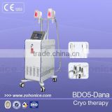 Fat Reduction BD05 Cryolipolysis Freezing Fat Cell Slimming Machine With 2 Handles 220 / 110V