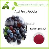 100% water - soluble acai berry brazil fruit powder for beverage