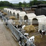 Cow calf hutches / houses / cages