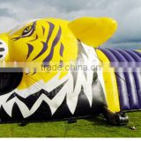 Various style inflatable tent, inflatable lawn tent for sale