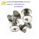 custom nickel plated binding screw rivet