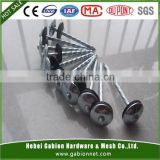 "Hot Sale 4""Galvanized roofing nails(Professional Manufacture )"