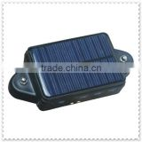 Solar GPS Tracker for cow/sheep easy to install cctr-808s                                                                         Quality Choice