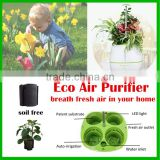best selling items types of ornamental plants garden plastic planter