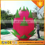 12 feet huge inflatable pitaya for sales promotion