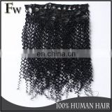 Clip in hair extension 100g,120g,150g,180g,200g,220g each set afro kinky curly clip in hair extensions