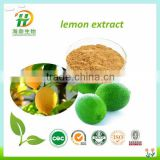 High Quality Food Grade Pure Lemon Flavor Powder