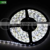 Best quality 60leds ip20 20-22lm 5050 led strip light white warm white red green blue CE&ROHS FAST SHIPPING