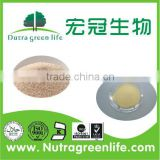 Dried Powder Formed Brewers Yeast Extract                                                                         Quality Choice