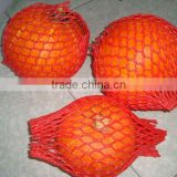 fresh red pumpkin (new)