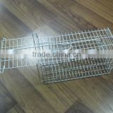 Galvanized Metal Mouse Trap