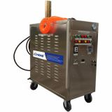 Gasoline portbale steam car washer