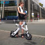 Portable Folding E Bike from China