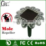 Hot product household item GH-316E Newest Solar lizard trap