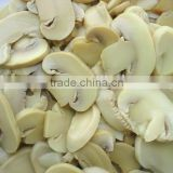 Canned Champignon mushrooms in good quality with factory price