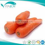 Hot Selling Pure Natural Beta-Carotene Beadlet 10% / 20% TAB with tablet grade for tablets and hard-shell capsules