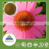 GMP Factory Supply echinacea extract of polyphenol, echinacea pallida extract, echinacea purpurea root extract