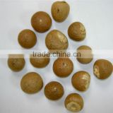 VIETNAM ORGANIC WHOLE AND SPLIT BETEL NUT BIG SALES