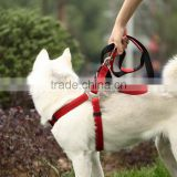 Durable wholesale pet dog leash and harness
